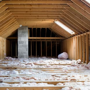 Why Your Attic Is So Attractive To Pests